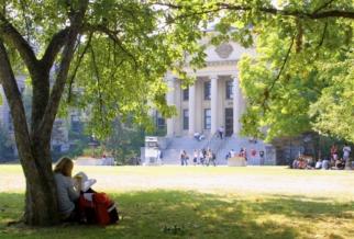 Ornée de haies vertes et couverte de lierre grimpant, la façade du pavillon Tabaret donne sur un espace ouvert où s'affairent des étudiants. À l'avant-plan, une femme, assise à l'ombre d'un arbre lui servant de dossier, lit un livre, un marqueur à la main